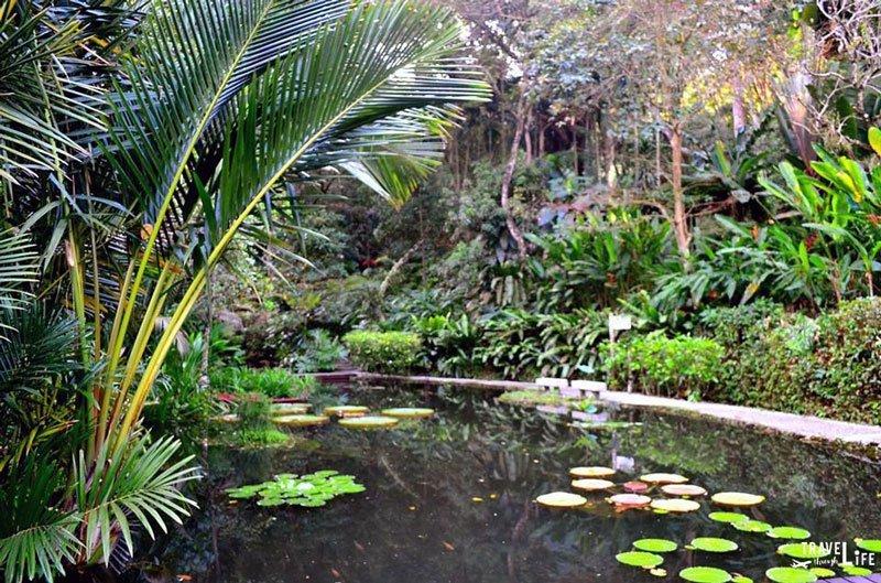 Penang Malaysia Tropical Spice Garden