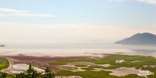 Suncheon South Korea Suncheon Bay