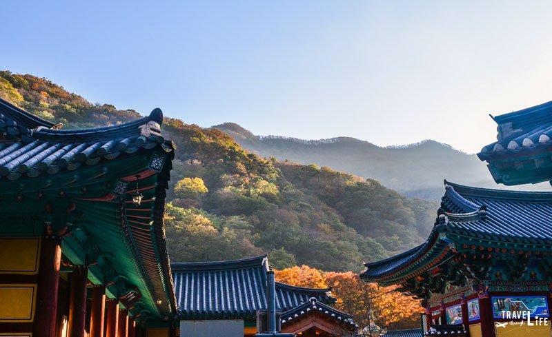 Naejang Temple Naejangsan Autumn Foliage