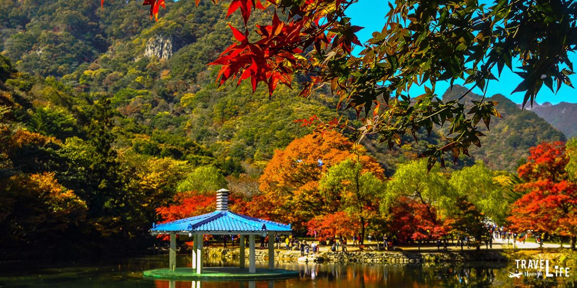 Naejangsan National Park South Korea