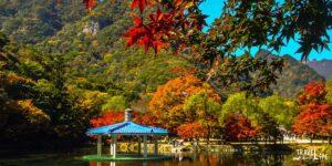Naejangsan National Park South Korea