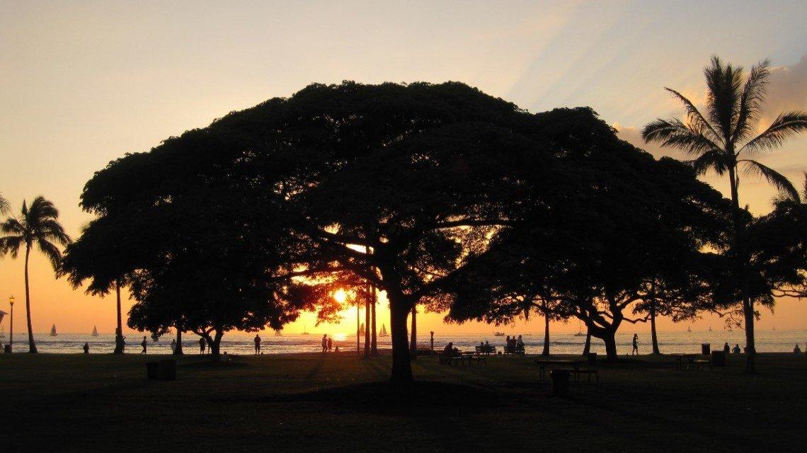 Honolulu City Guide - Photo by Renee O. via Trover.com