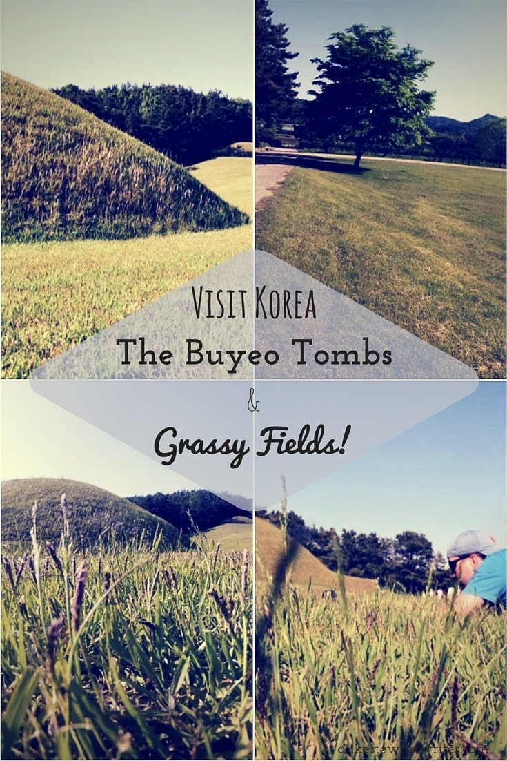 Visit Korea, The Buyeo Tombs and Grassy Fields By Duke Stewart