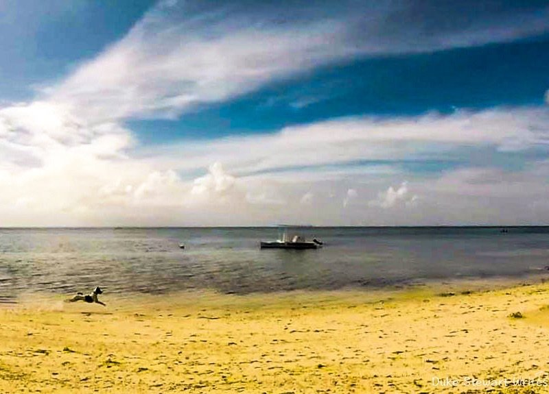 Skipper and the Beach, Anda in the Philippines