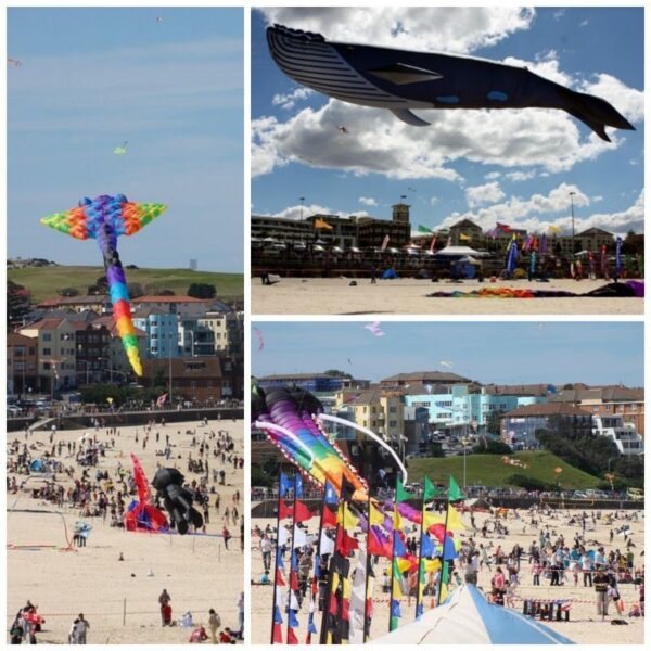 Sydney Festival of the Wind