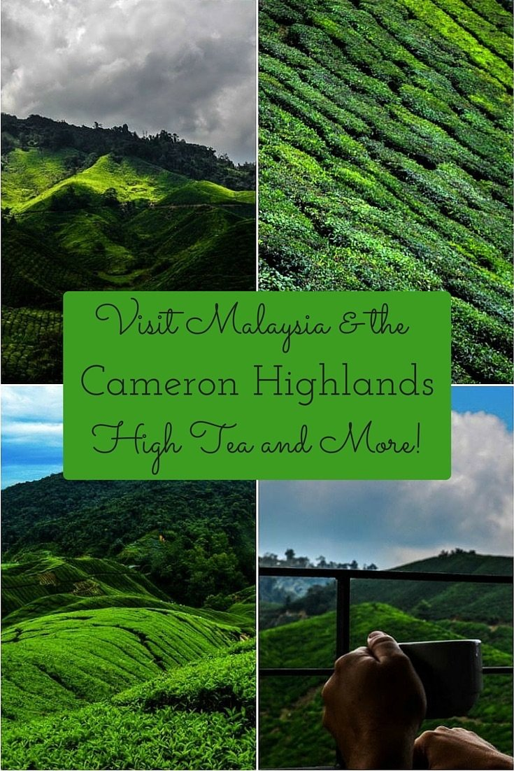 Visit Malaysia Cameron Highlands