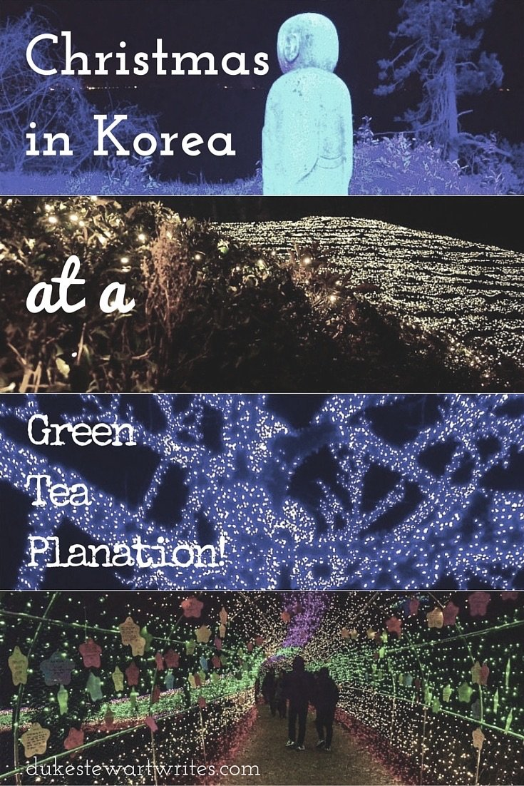 Christmas in Korea at a Green Tea Plantation