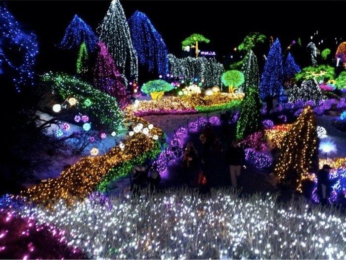 Garden of the Morning Calm Light Festival Photo by Melanie Choi via Trover.com