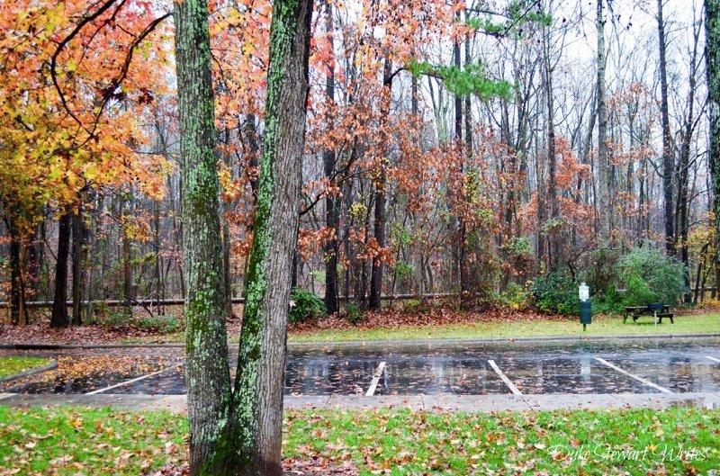 Outside of Duke Forest in Durham, North Carolina