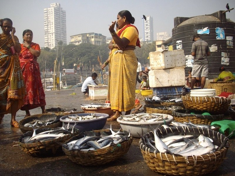 Mumbai Fish Market, Photo by Jess Signet