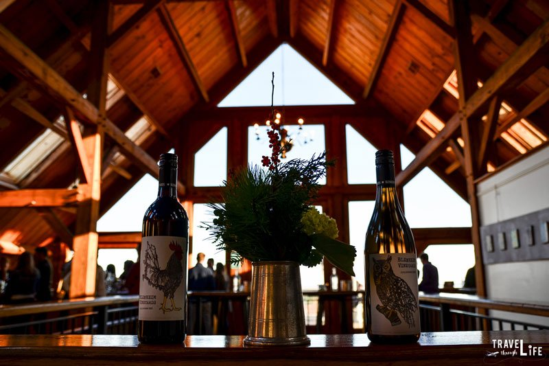 Places to Visit in Virginia Charlottesville Blenheim Vineyards