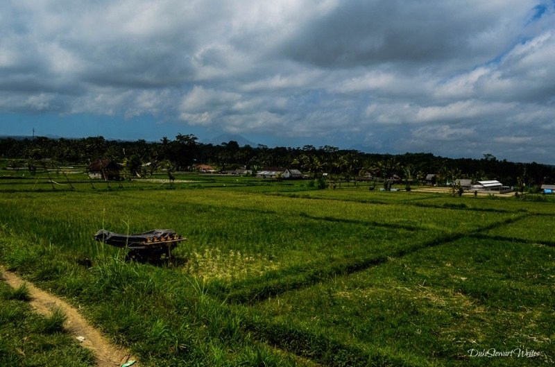 Rice Village in Bali, Indonesia
