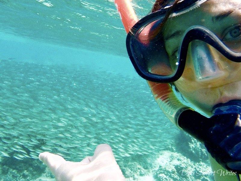 Swimming with Gili Air Fish