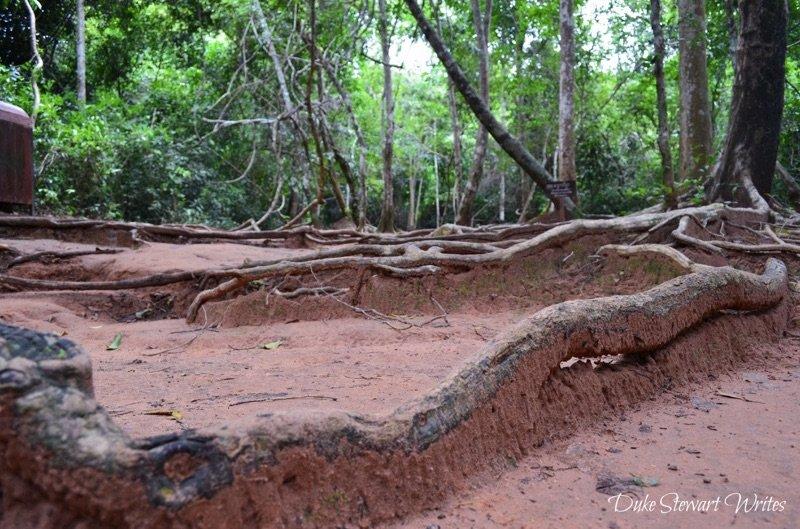 Walking towards Kbal Spean near Angkor in Cambodia