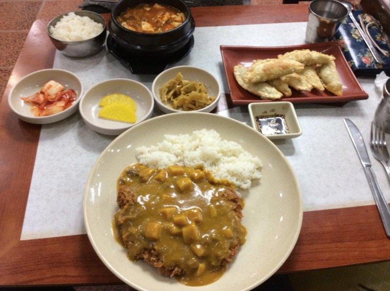 Korean Food Curry Donkasu and Mandu