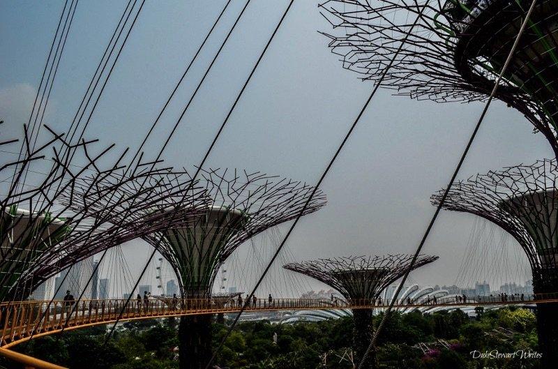 Singapore Supertree Grove and Causeway