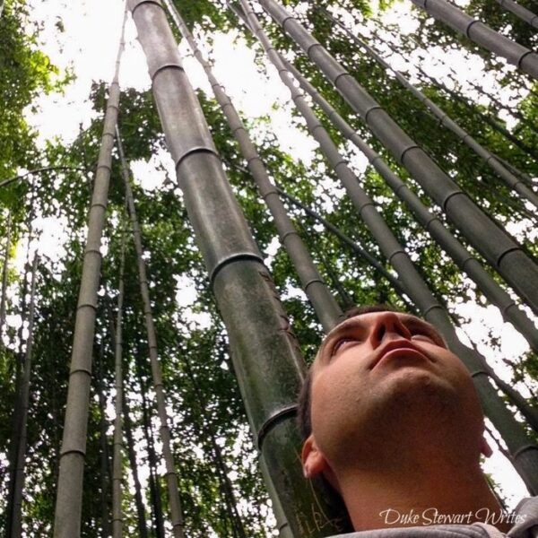 South Korea Damyang Bamboo Forest