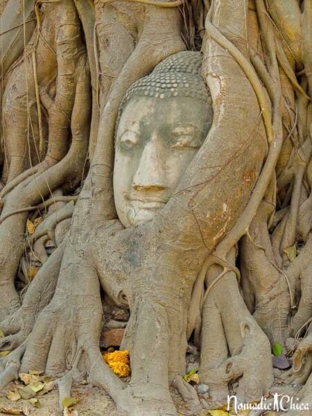 Ayutthaya Wat Maha Tat Photo by Gloria from Nomadic Chica