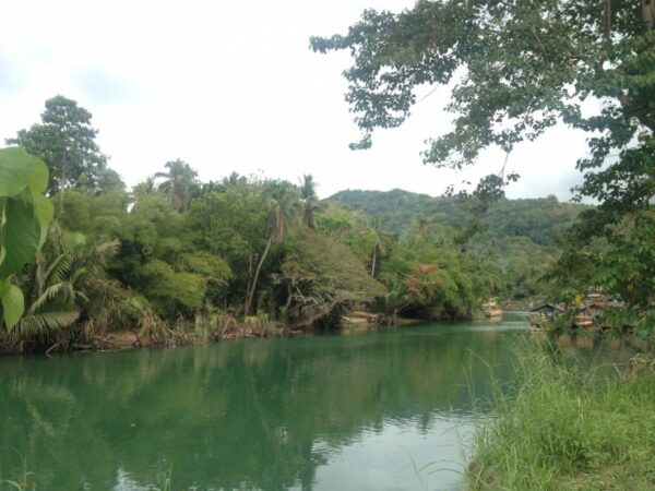 Bohol Loboc River Photo by Lotte from Phenomenal Globe