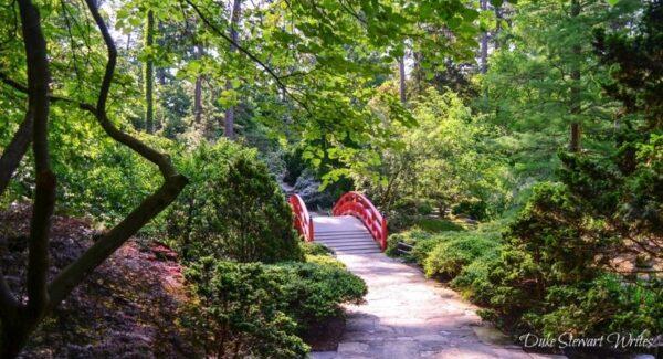 Duke Gardens Asiatic Arboretum and Red Bridge