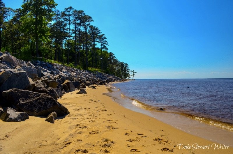 Croatan National Forest Pine Cliffs Beach