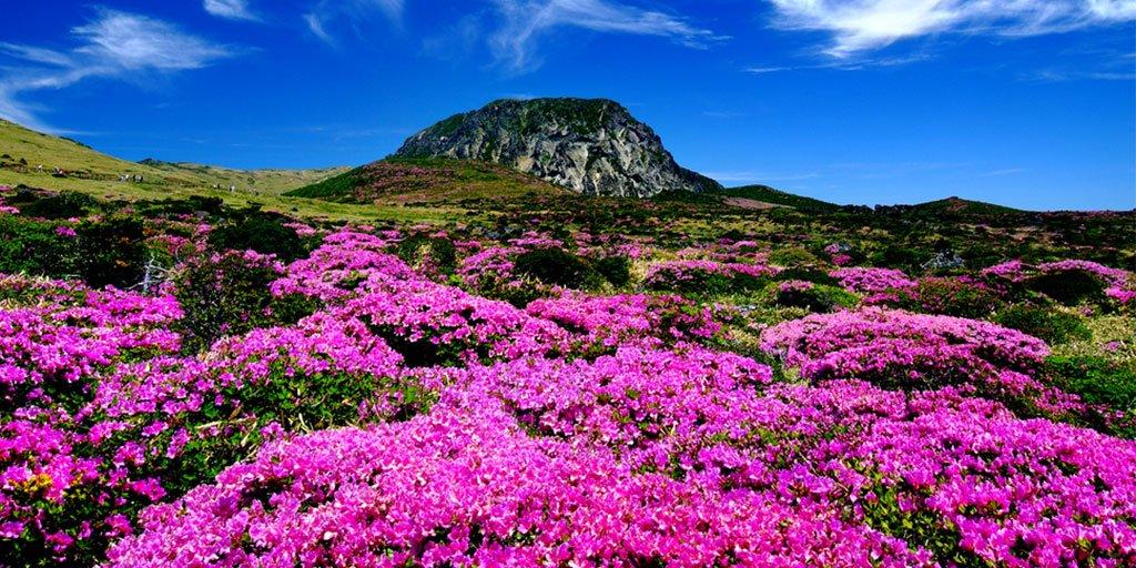 How to Enjoy Jeju Island on a Long Weekend