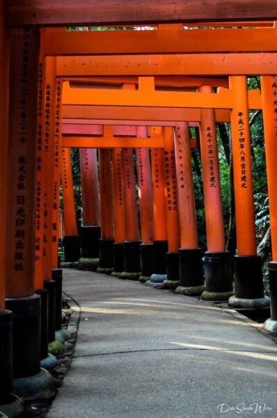 Looking Back on Fushimi Inari Kyoto