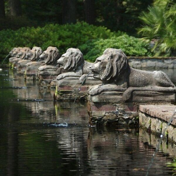 Norfolk Botanical Center Photo by Jeremy Shane via Trover