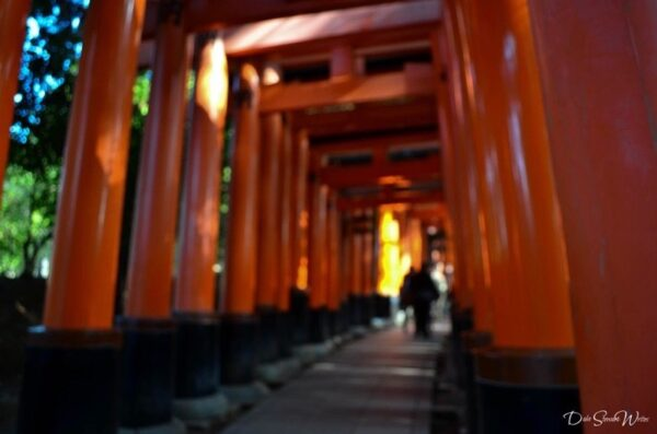 Walking into Fushimi Inari Kyoto Japan