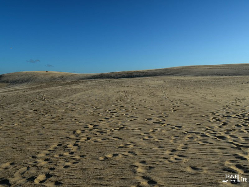 Jockey's Ridge State Park North Carolina