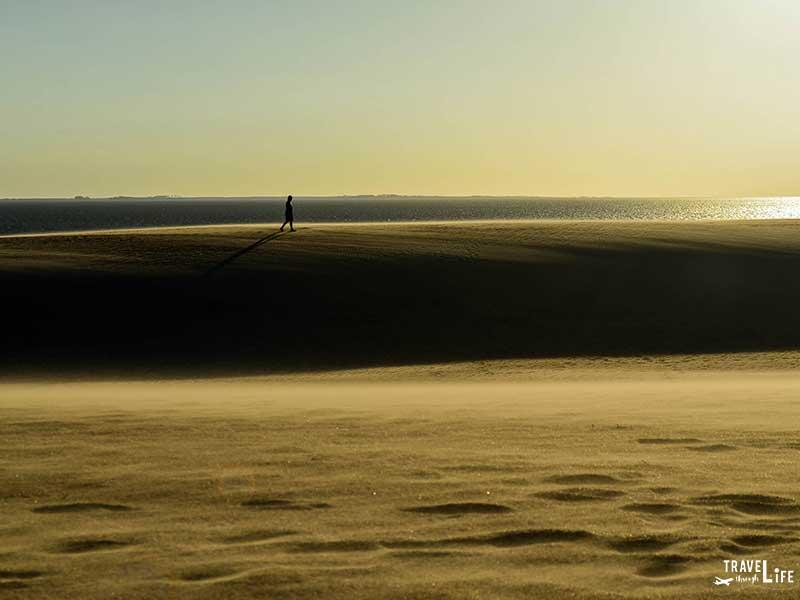 Jockey's Ridge State Park North Carolina Sand Dunes