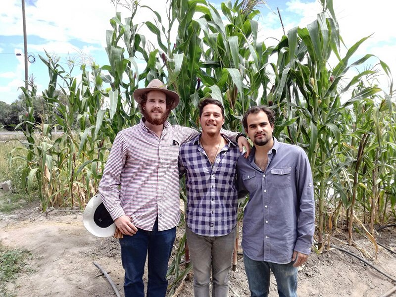 Mexican Farmers