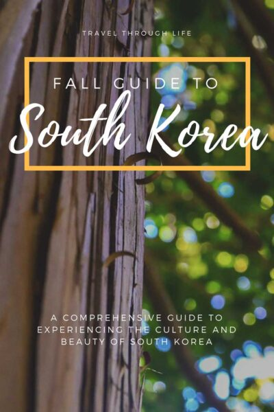 Fall Things to do in South Korea