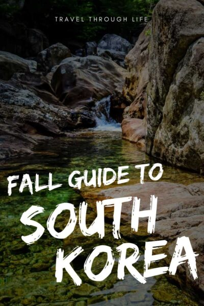 Fall in South Korea Travel Guide