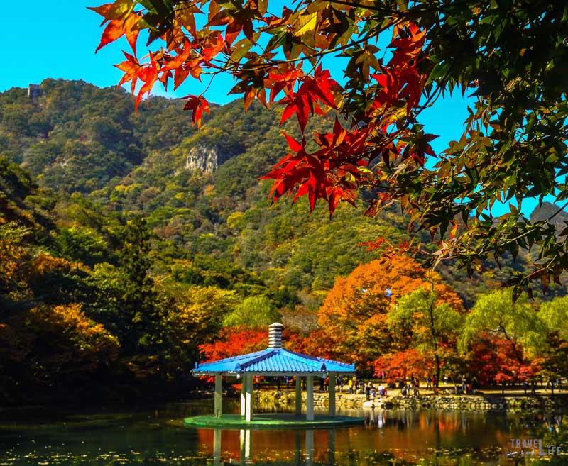 South Korea Naejangsan National Park