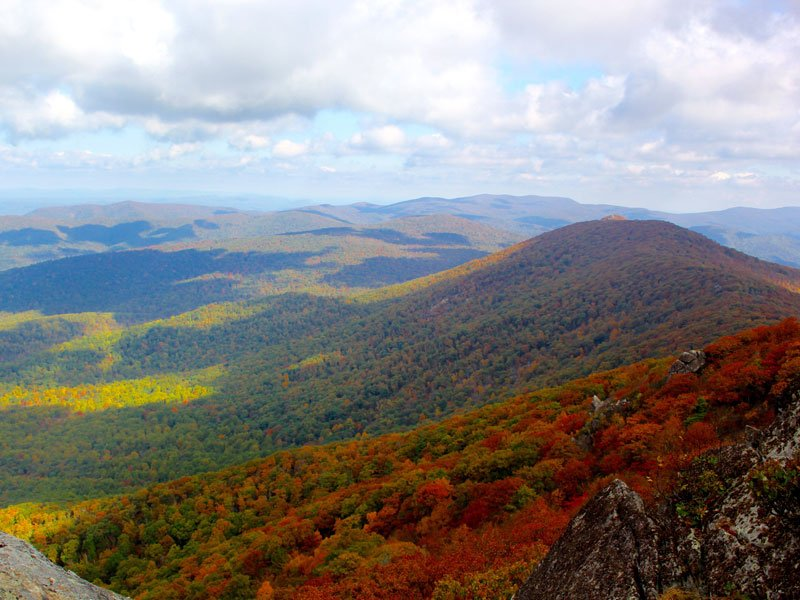 Fall Shenandoah National Park Julie McCool