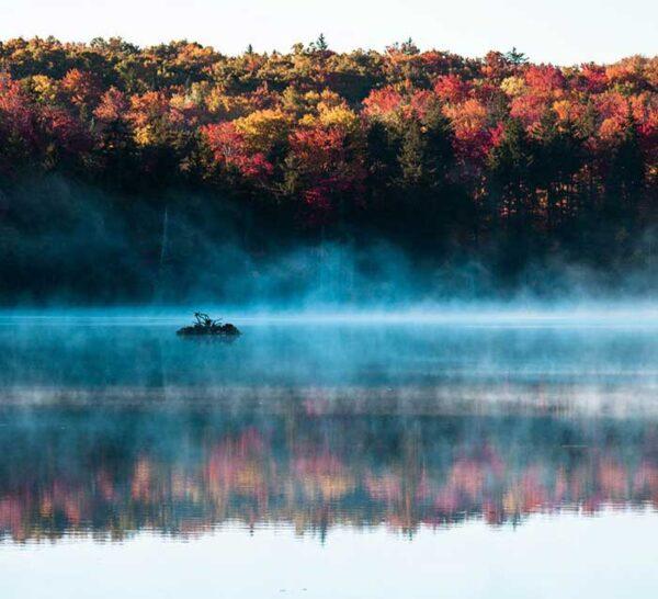 Fall in Vermont USA Photo by Tara Schatz