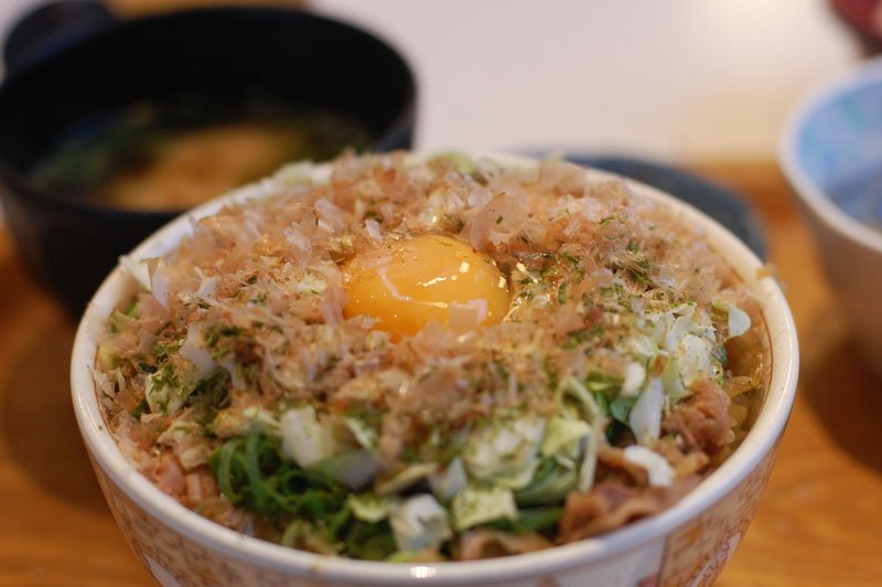 Japanese Food Donburi Photo Credit Flickr User Kimishowota