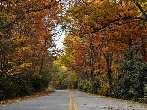 Places to Visit in the US during Fall Blue Ridge Parkway Image
