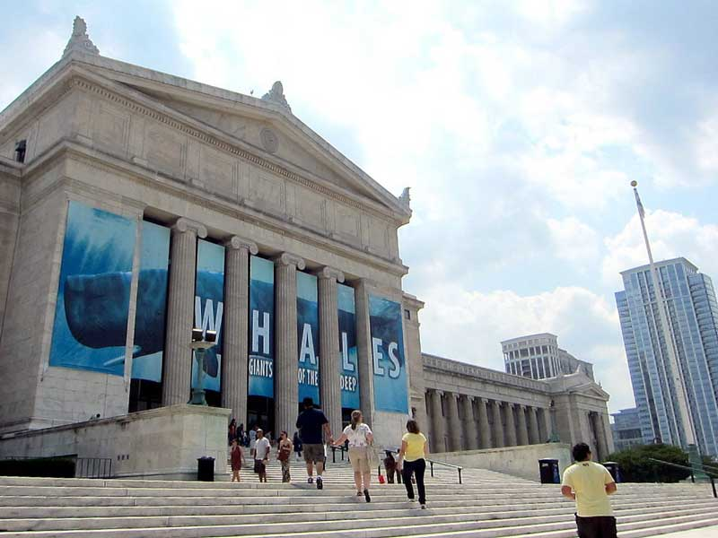 Chicago Field Museum of Natural History Photo by Flickr User Allison Meier