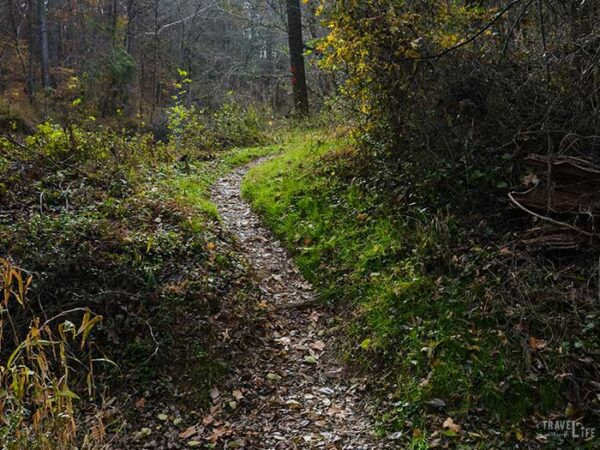Outdoor Things to Do in Durham NC Pennys Bend Image