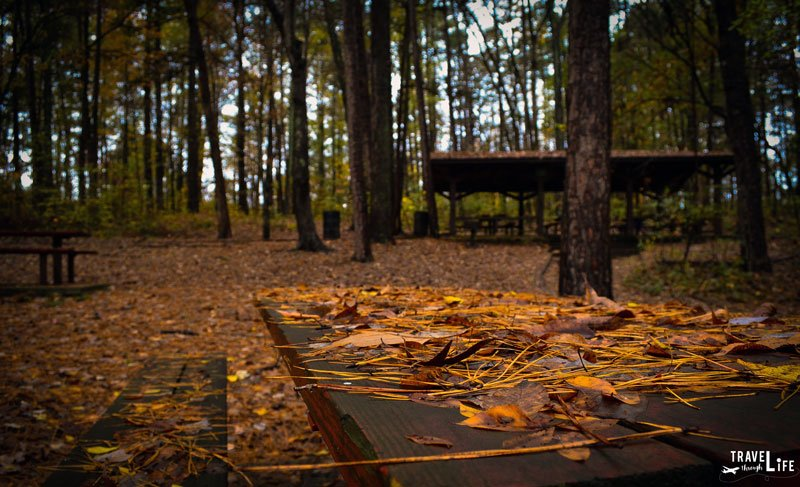 Outdoor Things to Do in Durham NC - Whippoorwill Park in Durham NC
