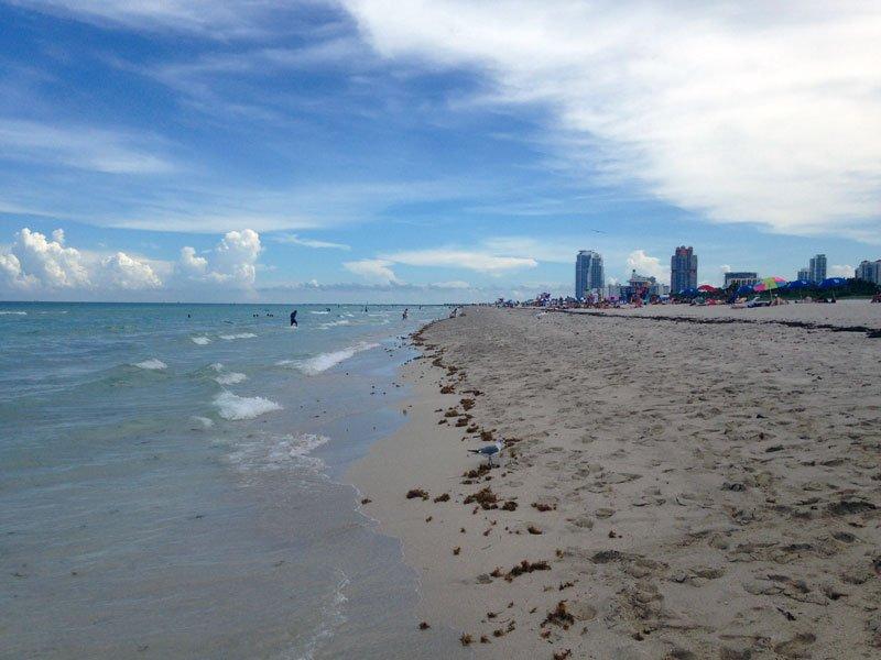 South Beach Miami Photo by India Amos