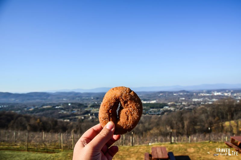 Carter Mountain Apple Orchard