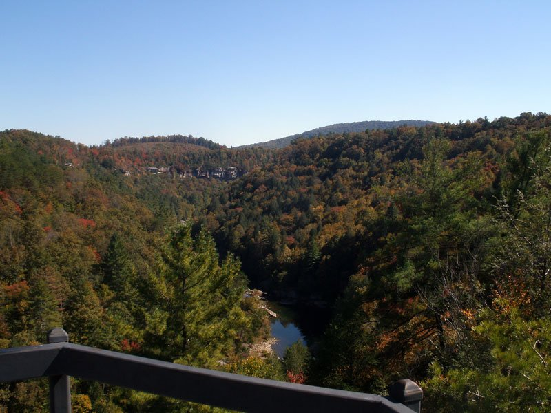 Lilly Bluff Overlook view of Obed River Image by Clayton Hensley