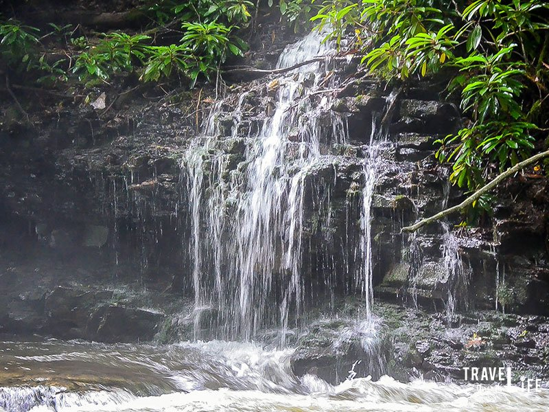 What to do in Virginia Cascade Falls Regional Park