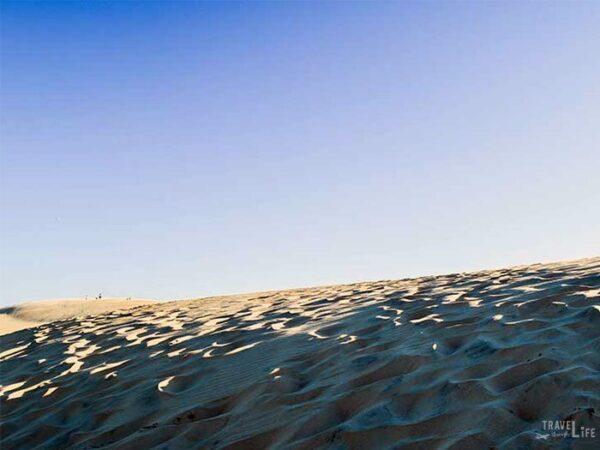 Jockeys Ridge State Park Sand Dune Ridge