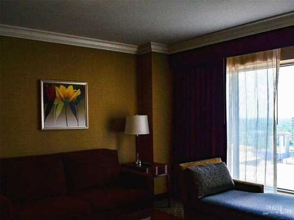Hotels in Charlotte NC Hilton Charlotte Center City Image