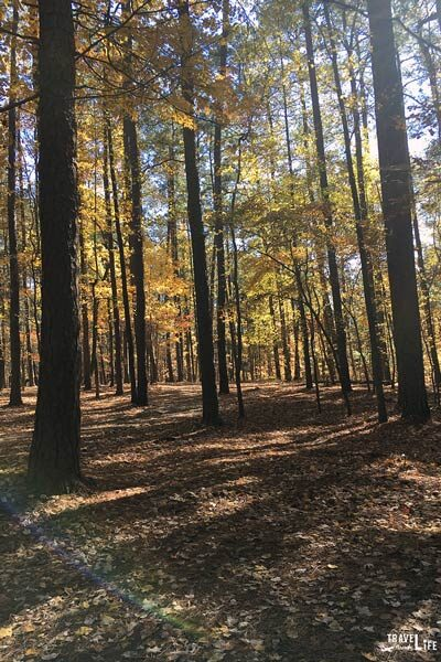 Hiking in North Carolina near Raleigh Umstead State Park