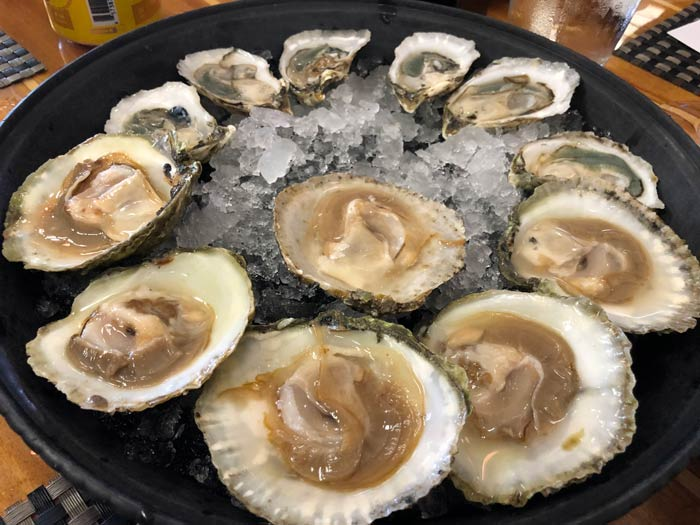 Outer Banks Seafood Restaurants Coastal Provisions Oyster Bar and Wine Bar Cafe Photo by Dana Freeman